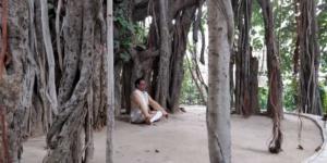 Kriya Yog